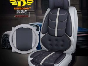 premium-leather-seat-carvity